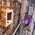 4階壁型枠と1・2階サッシ取付
